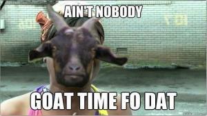 goat-meme-1