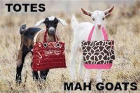 goat-meme-5